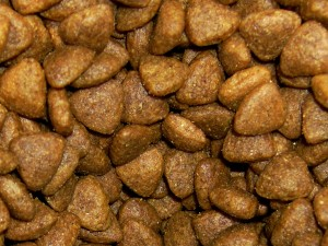 Dry Cat Food with Kibble