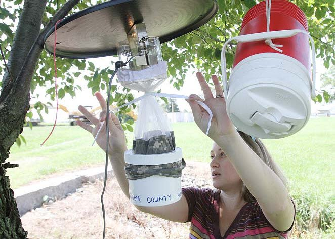Diy How To Get Rid Of Mosquitoes By Homemade Killer Trap