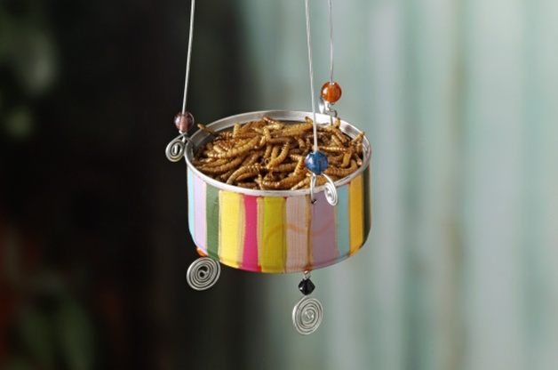 9 DIY Plans to Make Homemade Bird Feeders - Going EverGreen