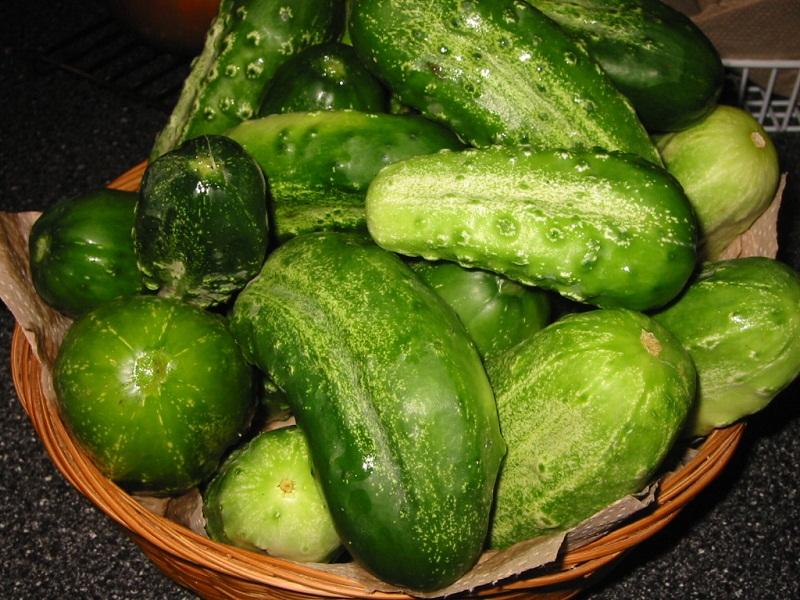 recipe: cucumber translucent inside [21]