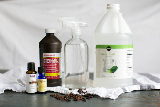 homemade all purpose cleaner recipes going evergreen. Black Bedroom Furniture Sets. Home Design Ideas