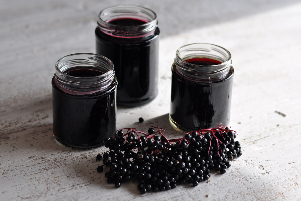 Homemade elderberry syrup recipe going evergreen - Fir tree syrup recipe and benefits ...